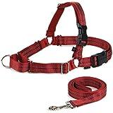 PetSafe Reflective Easy Walk Dog Harness, Small/Medium, Red/Black