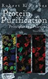 img - for Protein Purification: Principles and Practice (Springer Advanced Texts in Chemistry) book / textbook / text book