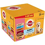 Pedigree Pouch Puppy Food Selection in Jelly 24 x 100g (Pack of 2, Total 48 pouches)