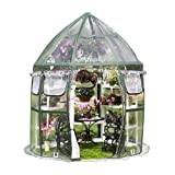 Flower House FHCV900 Conservatory Clear Greenhouse