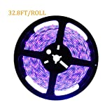 Deep Dream UV Black Light Led Strip 32.8Ft/10M 3528 600LEDs Flexible Waterproof IP65 BlackLight Night Fishing Sterilization implicitly Party with 12V 4A Power Supply