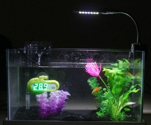 Gadgetzone(Us Seller) 3 Mode 2W Energy-Saving Flexible Lamp Arm Aquarium Clip Led Lighting Lamp With 24 White+ 4 Blue Led Light, Touchable Inductive Switch (Black)