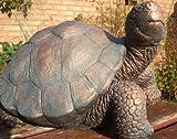 Ornate stone Tortoise ornament