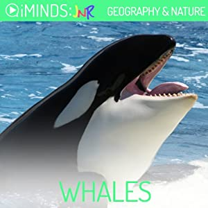 Whales Audiobook
