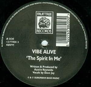 """Spirit In Me - Vibe Alive 12"""""""