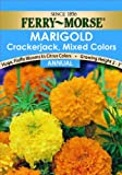 Ferry-Morse Marigold Crackerjack Mixed Colors Seeds (Annual)