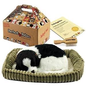 Signes Grimalt Plush Toy Perfect Petzzz Border Collie