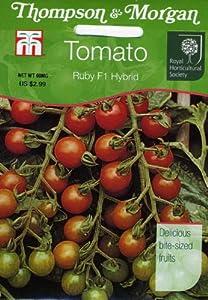 Thompson & Morgan 560 RHS Tomato Ruby F1 Seed Packet