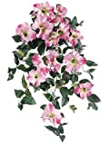 "24"" Petunia Hanging Bush x10 Pink Cerise (Pack of 6)"