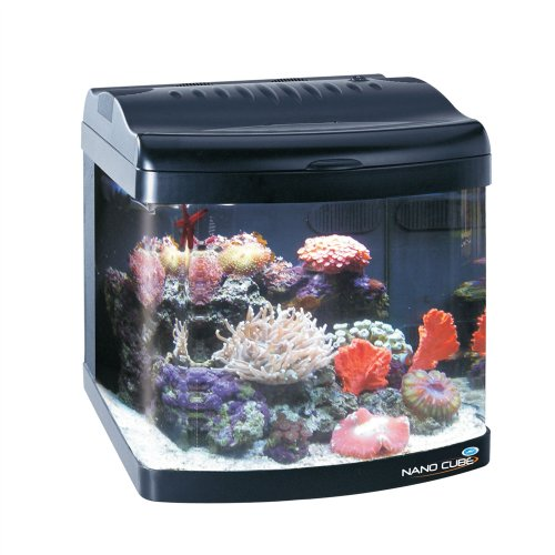 Jbj Nano Cube Dx Aquarium, 12-Gallon