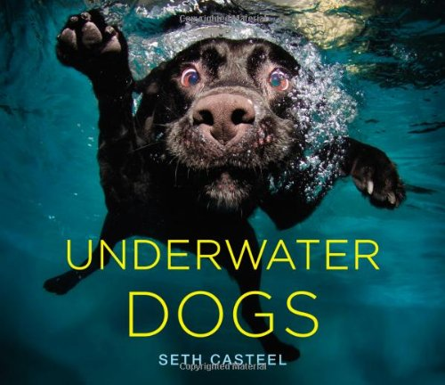 Underwater Dogs (Coffee Table Books Hardcover compare prices)