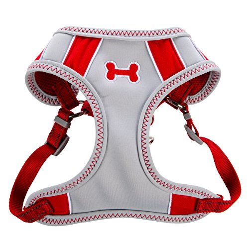 Top Paw Sporty Comfort Adjustable Dog Harness, RED, SMALL (Top Paw Small Harness compare prices)