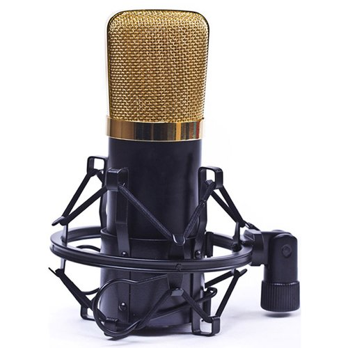 Huntgold New Condenser Microphone Mic Studio Broadcasting+Shock Mount For Podcast Webcast(Black)