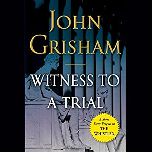 Witness to a Trial Hörbuch