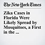 Zika Cases in Florida Were Likely Spread by Mosquitoes, a First in the Continental U.S. | Pam Belluck,Lizette Alvarez,Sabrina Tavernise