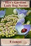 Hirts Gardens Ladybug Nectar, 8 oz