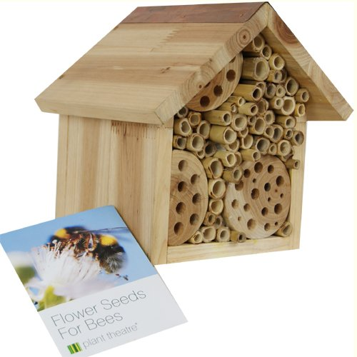 Bee Hotel & Flower Seeds for Bees by Plant Theatre - Ideal Gift - Seeds Included!