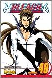 Bleach Volume 48