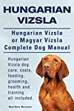Hungarian Vizsla. Hungarian Vizsla Or Magyar Vizsla Complete Dog Manual. Hungarian Vizsla dog care, costs, feeding, grooming, health and training all included.