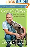 Cesar's Rules: Your Way to Train a We...