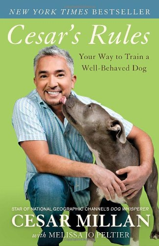 cesars-rules-your-way-to-train-a-well-behaved-dog