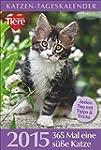 Katzen-Tageskalender 2015