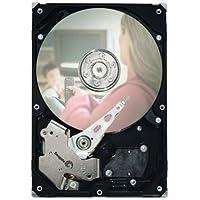 Seagate ST3250310CS 250GB 7200RPM 8MB Cache SATA 3.5 Internal Desktop Hard Drive W 1 Year Warranty