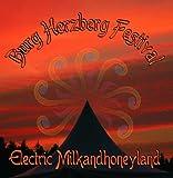 Burg Herzberg Festival - Electric Milkandhoneyland