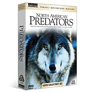 North American Predators