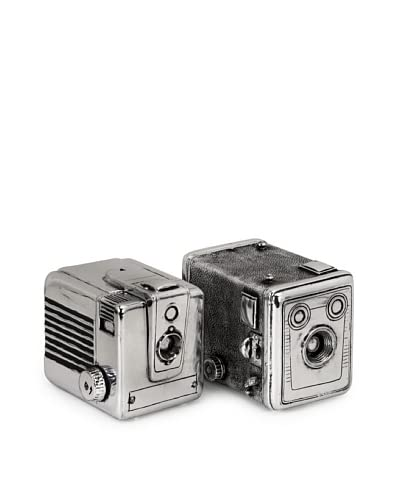 Expedition Set of 2 Vintage Camera Boxes, Silver