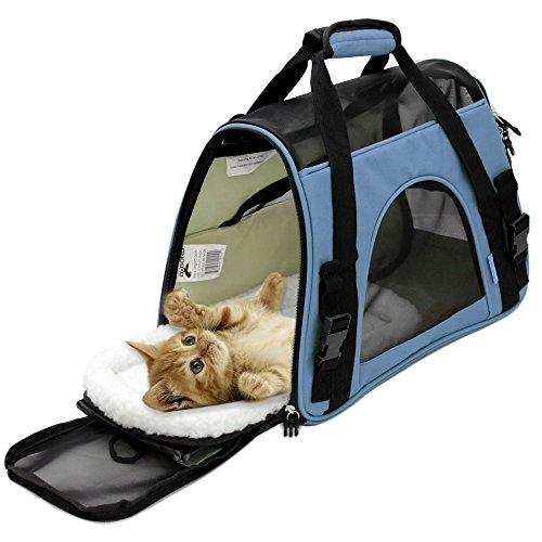 Best Dog Travel Carrier