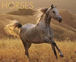 Horses 2012 Calendar (Just (Willow Creek))
