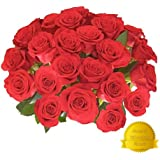 Flower Delivery - 25 RED PREMIUM VALENTINE'S ROSES. Friday Feb 12th Delivery. FREE SHIPPING, FREE GIFT MESSAGE by Spring in the Air Luxury Roses Ð Will WOW Your Gift Recipient!