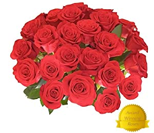 Flowers For Delivery On Time For Valentine's Day - Impress Her With 25 GIANT, RED, Incredibly Fragrant Long Stem Roses PLUS your own LIFETIME DISCOUNT COUPON CODE - Top Rated Roses On Amazon from Spring in the Air Luxury Roses - Will WOW Your Recipient!
