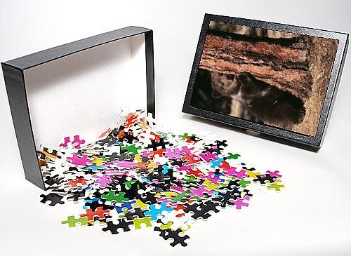 Photo Jigsaw Puzzle Of Grizzly Bear - By Tree