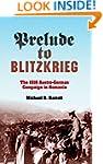 Prelude to Blitzkrieg: The 1916 Austr...