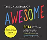 Calendar of Awesome 2014 Daily Calendar