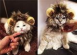 Vedem Pet Lion Mane Wig Costume Hat for Cat Dog Halloween (S)