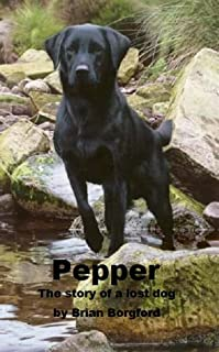 Pepper by Brian Borgford ebook deal