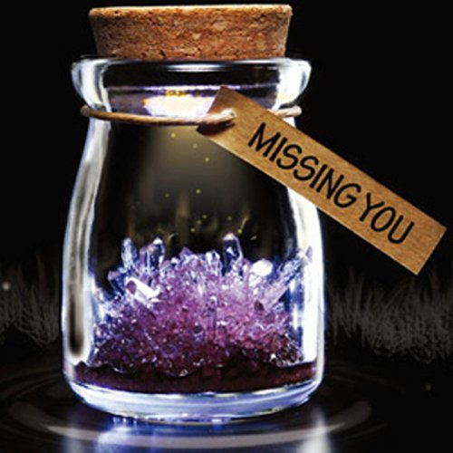 Diy Growing Grow Crystal Bottle Jar Powder Led Mood Light Lamp Wishing Wish Purple front-164113