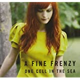 One Cell in the Sea ~ A Fine Frenzy