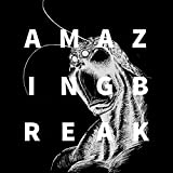 TERRASPEX「AMAZING BREAK」