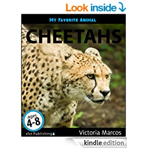 My Favorite Animal: Cheetahs