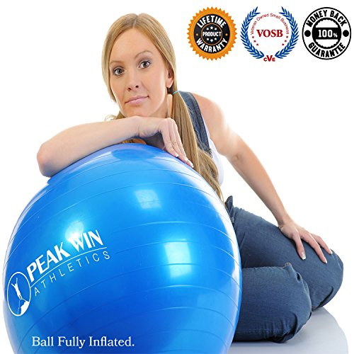 Anti-burst Exercise and Stability Ball with Pump, Training Guide, and. [Scroll Down for Details in the Description] (Win Peaks compare prices)