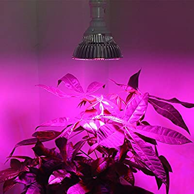 Derlight Advanced LED Plant Grow Light for Hydroponic Garden and Greenhouse Use - E27 socket, Full Spectrum