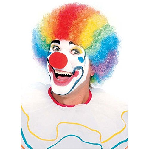 Adult Colorful Clown Wig