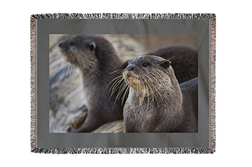 River Otters on Log (60x80 Woven Chenille Yarn Blanket)