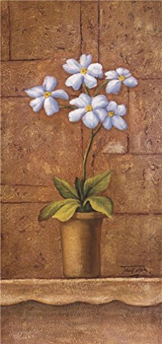 The Perfect Effect Canvas Of Oil Painting 'Pot Plant Of White Flowers' ,size: 10x21 Inch / 25x54 Cm ,this Reproductions Art Decorative Canvas Prints Is Fit For Laundry Room Decoration And Home Decoration And Gifts