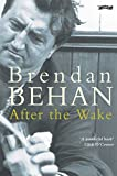 After The Wake (Classics in Irish Fiction)