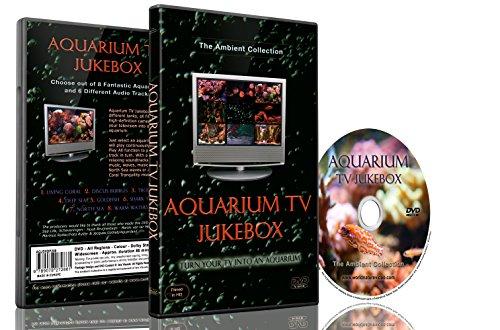 TVジューク  ボックスと水族館TVジューク  ボックスのデスク  セット - 火と魚の24シーン